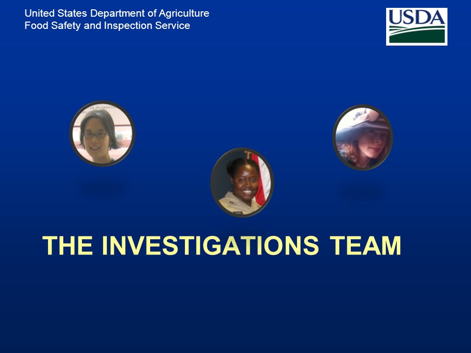 The Investigations Team