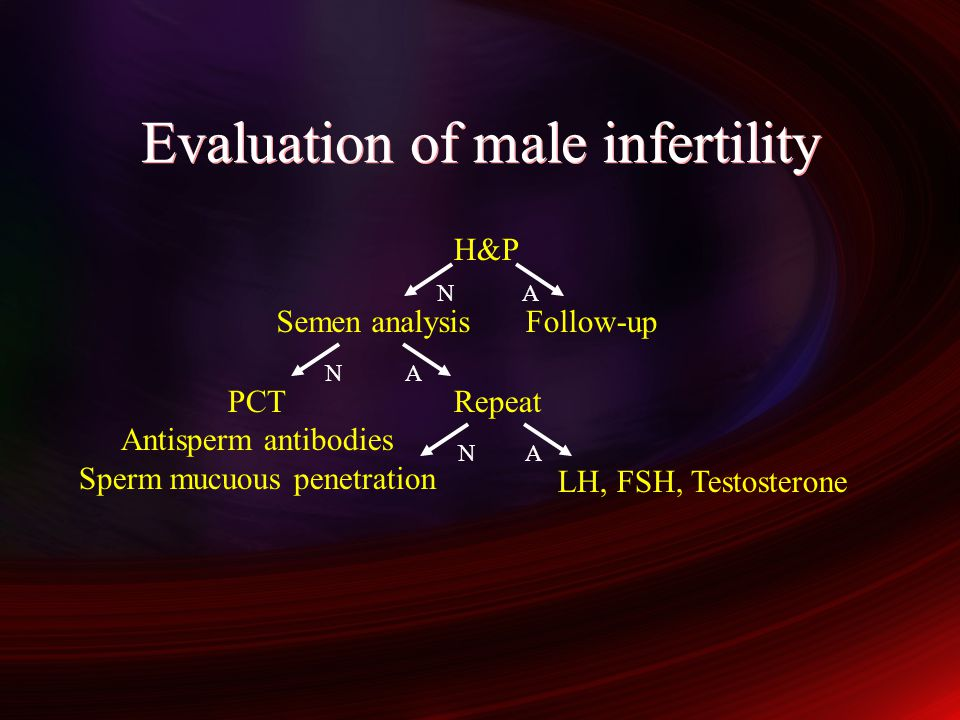 Evaluation of male infertility