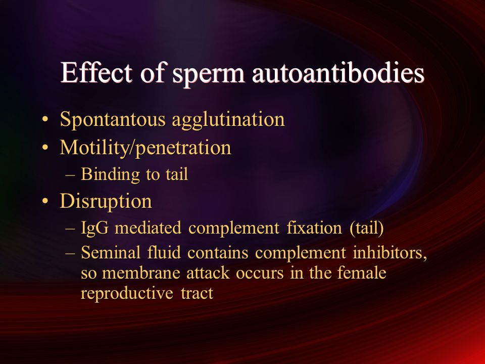 Effect of sperm autoantibodies