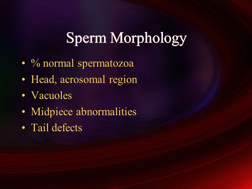Sperm Morphology % normal spermatozoa Head, acrosomal region Vacuoles