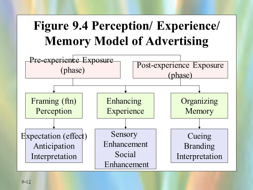 Figure 9.4 Perception/ Experience/ Memory Model of Advertising