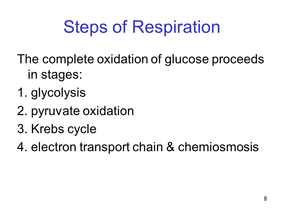 Steps of Respiration The complete oxidation of glucose proceeds in stages: 1. glycolysis. 2. pyruvate oxidation.