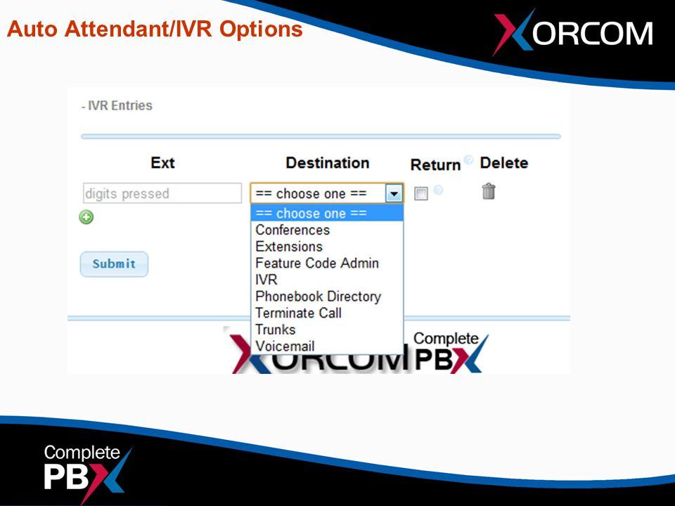 Auto Attendant/IVR Options