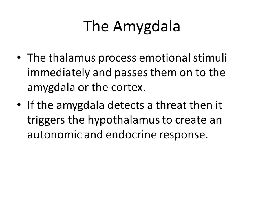 The Amygdala The thalamus process emotional stimuli immediately and passes them on to the amygdala or the cortex.