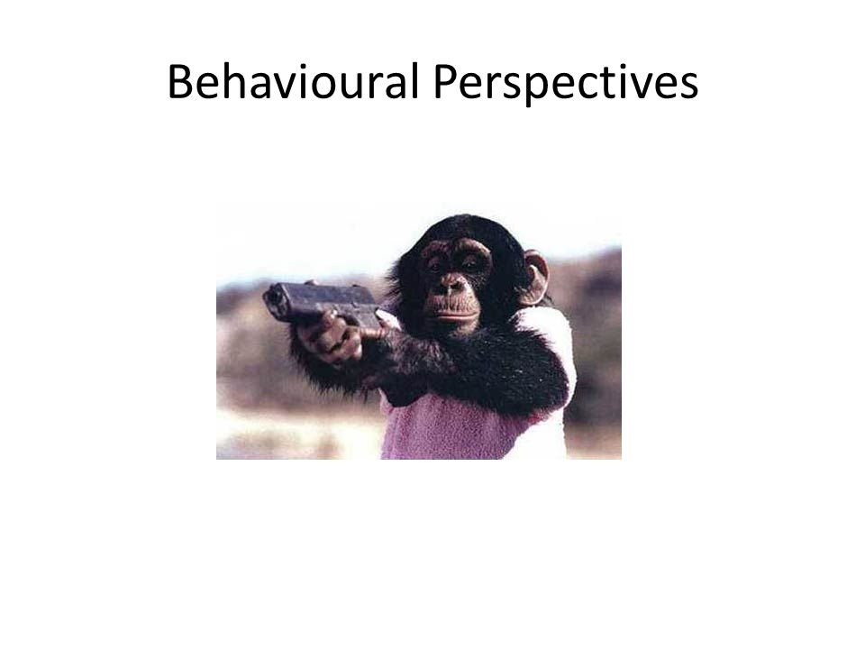 Behavioural Perspectives