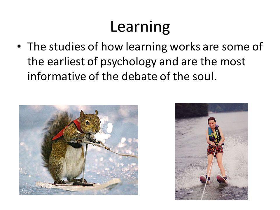 Learning The studies of how learning works are some of the earliest of psychology and are the most informative of the debate of the soul.