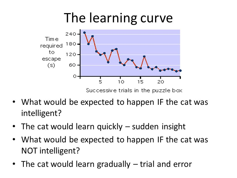 The learning curve What would be expected to happen IF the cat was intelligent The cat would learn quickly – sudden insight.