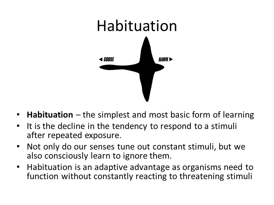 Habituation Habituation – the simplest and most basic form of learning
