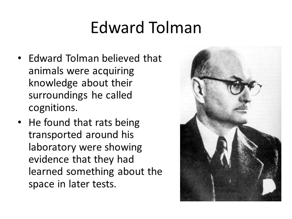 Edward Tolman Edward Tolman believed that animals were acquiring knowledge about their surroundings he called cognitions.