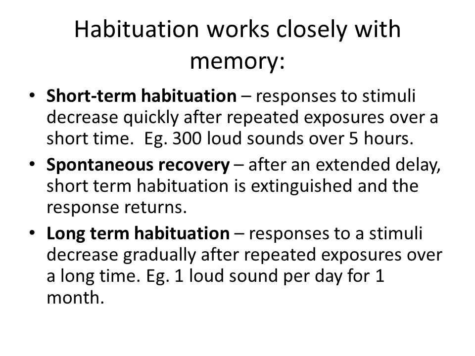 Habituation works closely with memory: