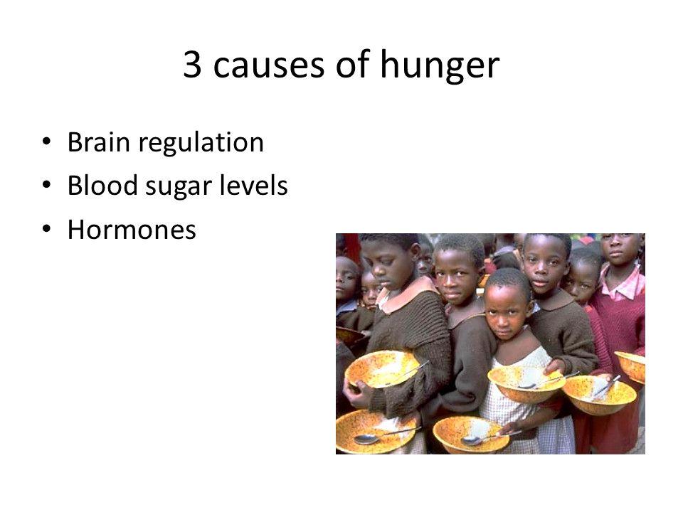 3 causes of hunger Brain regulation Blood sugar levels Hormones