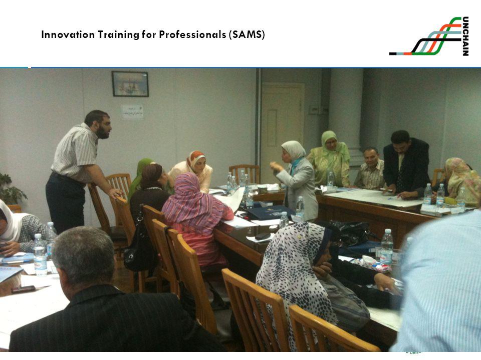 Innovation Training for Professionals (SAMS)