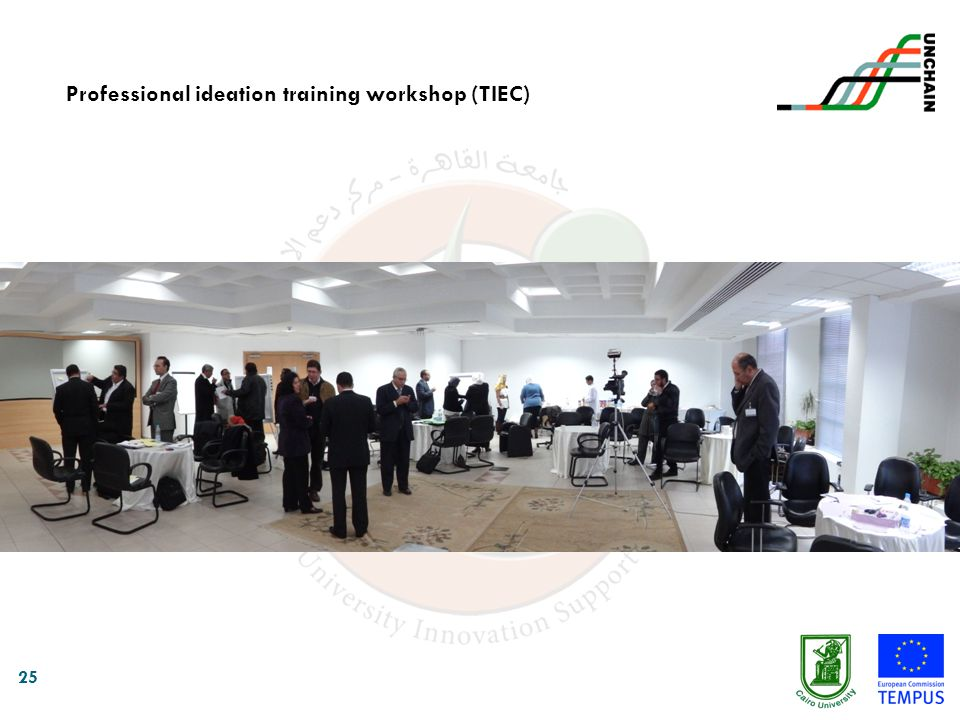 Professional ideation training workshop (TIEC)