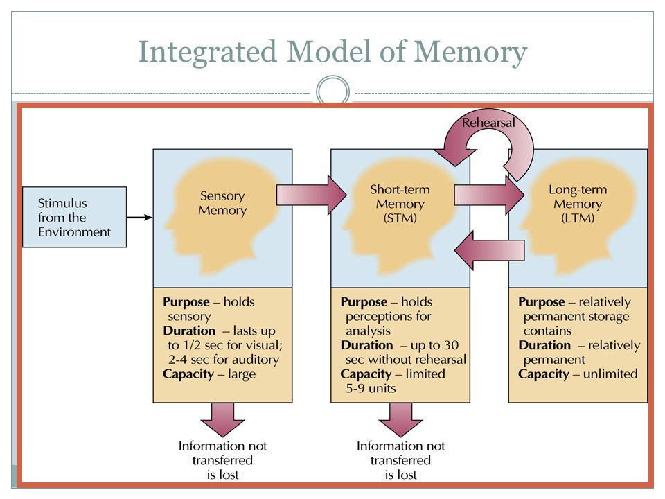 Integrated Model of Memory