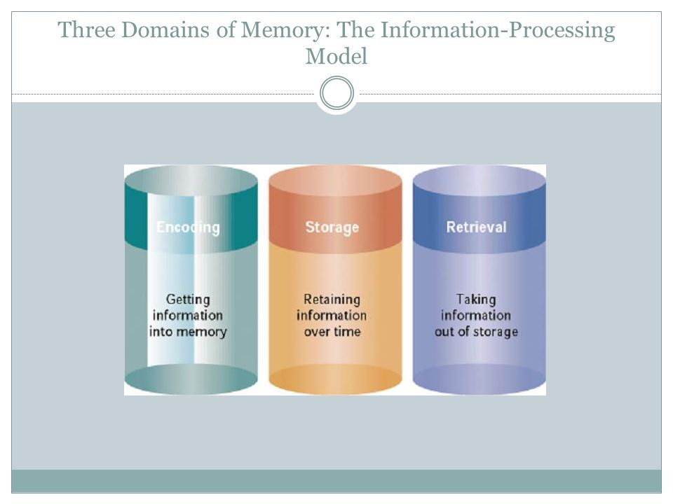 Three Domains of Memory: The Information-Processing Model
