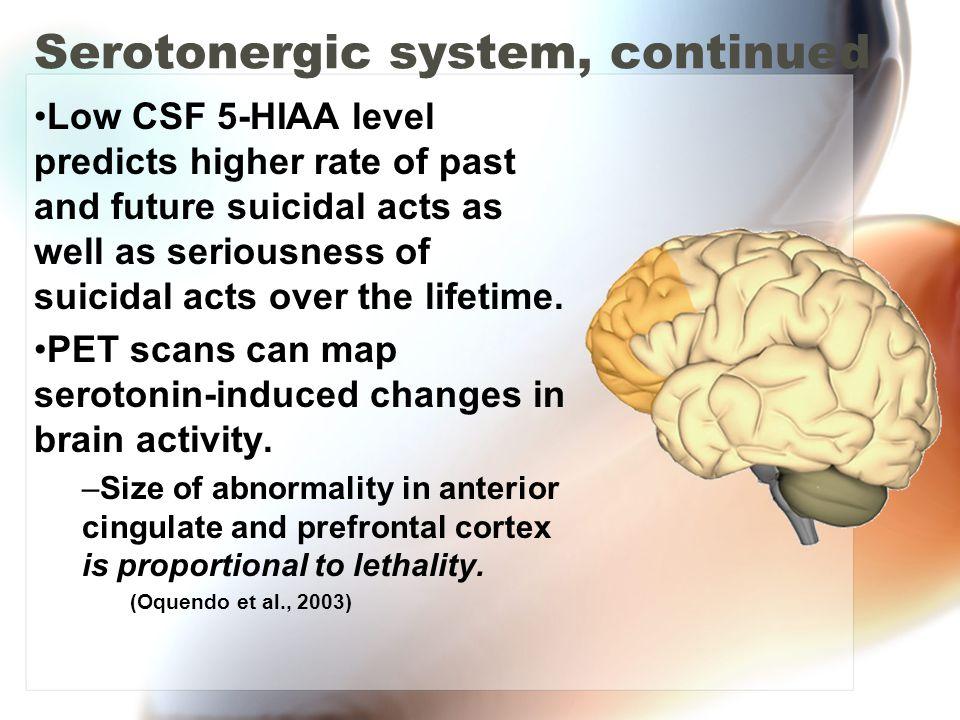 Serotonergic system, continued