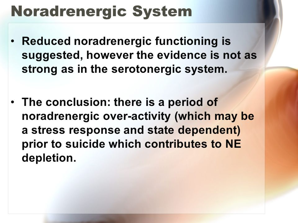 Noradrenergic System Reduced noradrenergic functioning is suggested, however the evidence is not as strong as in the serotonergic system.