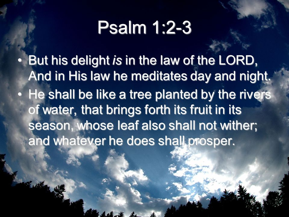 Psalm 1:2-3 But his delight is in the law of the LORD, And in His law he meditates day and night.