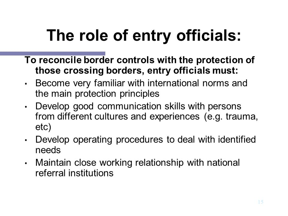 The role of entry officials: