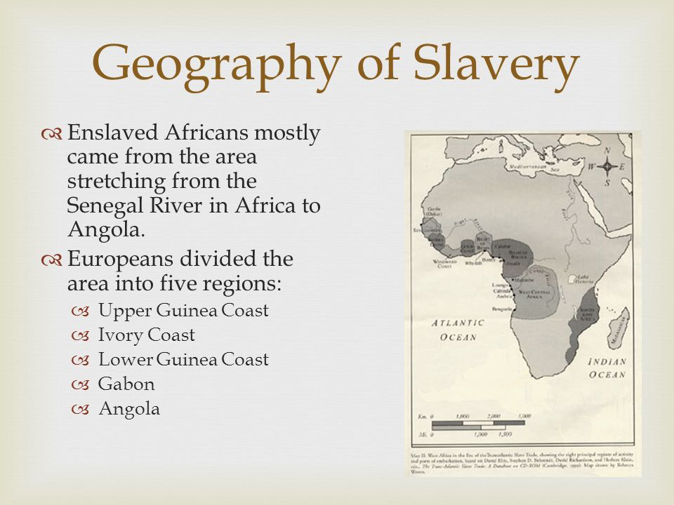 Geography of Slavery Enslaved Africans mostly came from the area stretching from the Senegal River in Africa to Angola.