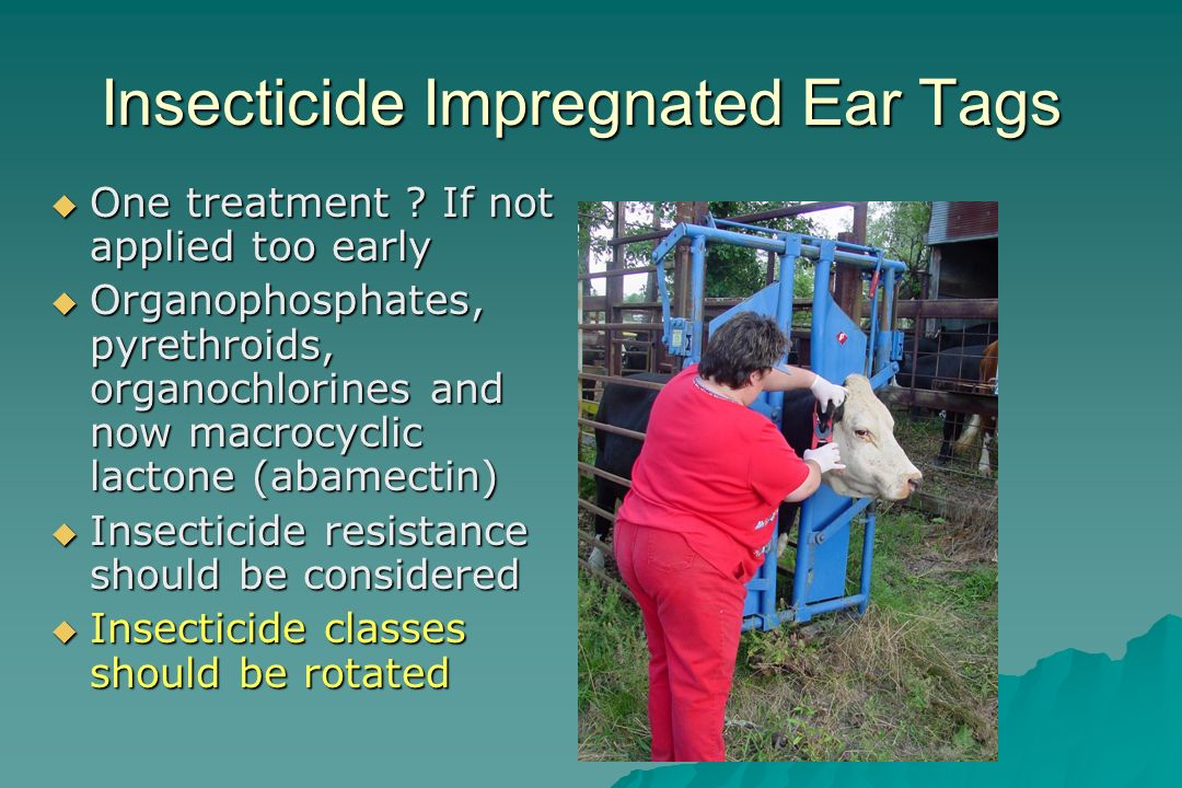 Insecticide Impregnated Ear Tags