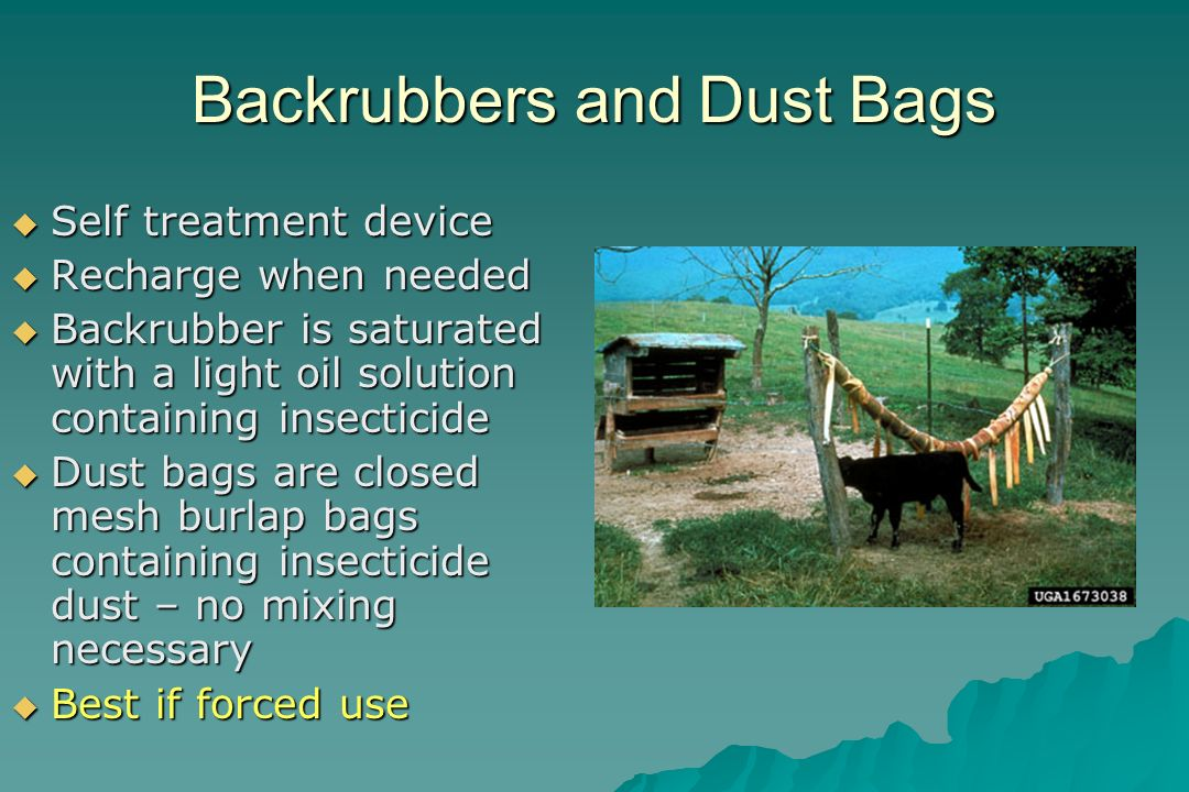 Backrubbers and Dust Bags