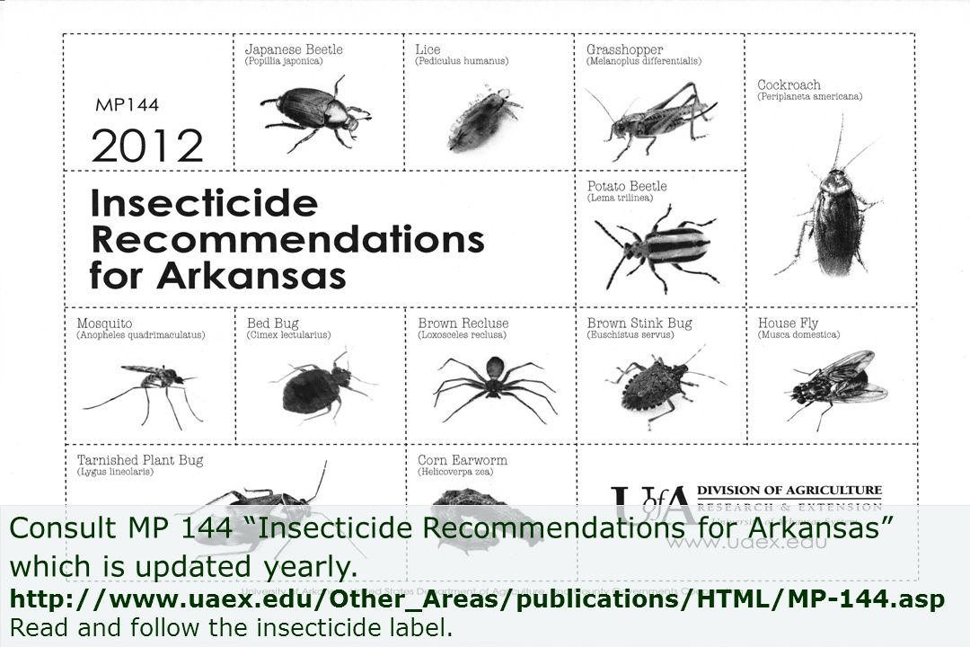 Consult MP 144 Insecticide Recommendations for Arkansas