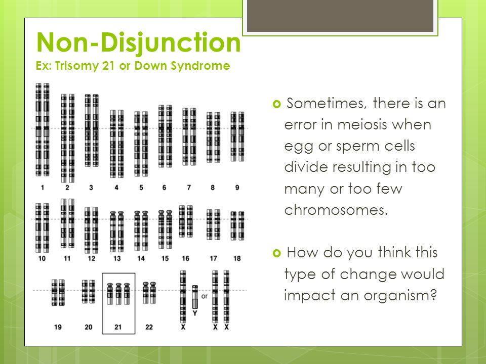 Non-Disjunction Ex: Trisomy 21 or Down Syndrome