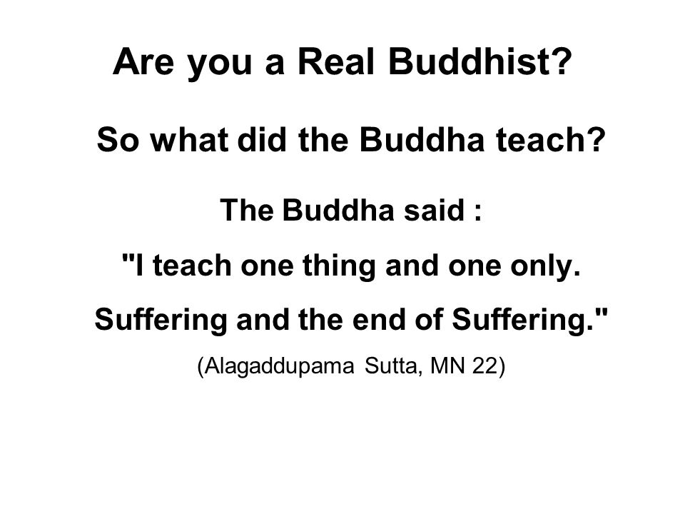 Are you a Real Buddhist So what did the Buddha teach