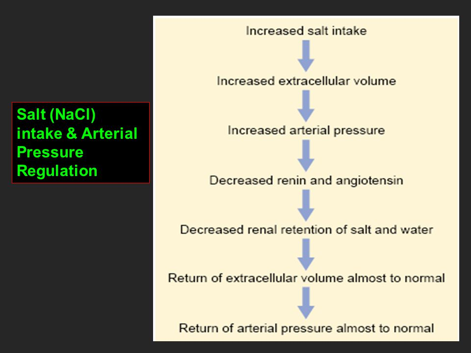 Salt (NaCl) intake & Arterial Pressure Regulation
