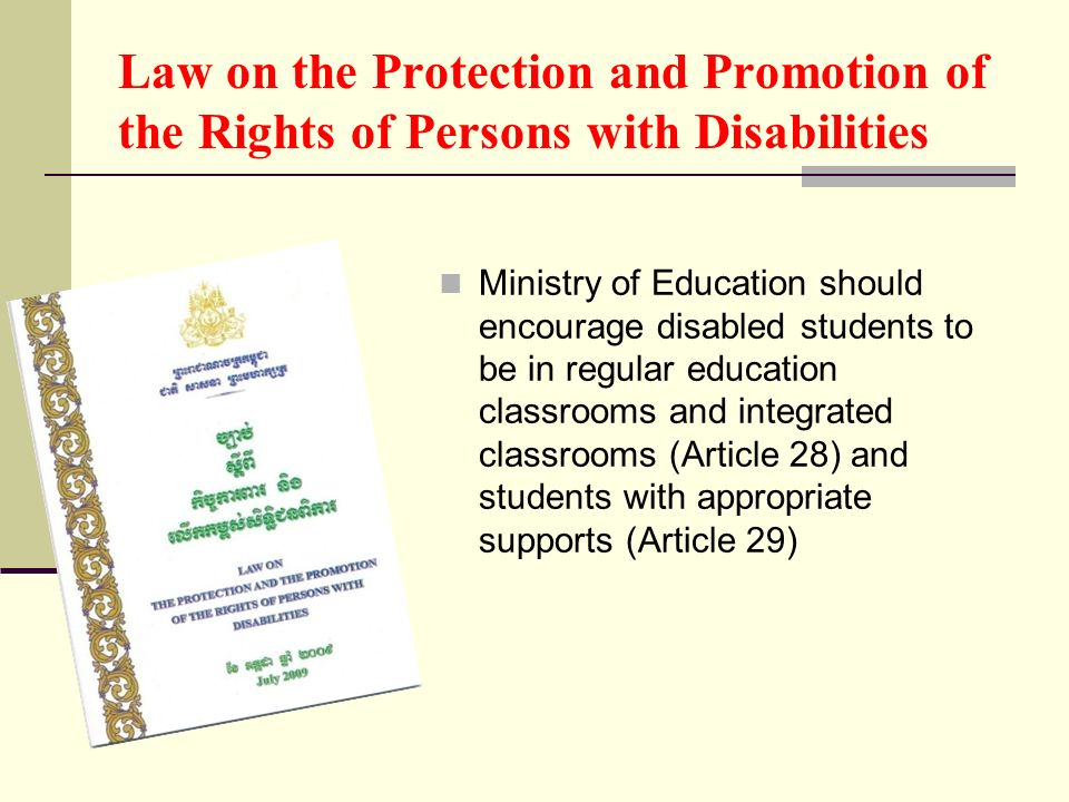 Law on the Protection and Promotion of the Rights of Persons with Disabilities