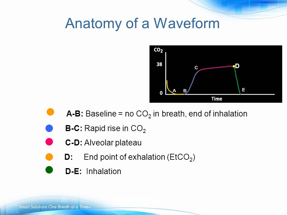 Anatomy of a Waveform A-B: Baseline = no CO2 in breath, end of inhalation. C-D: Alveolar plateau. D.