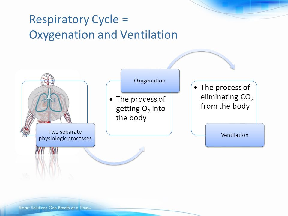 Respiratory Cycle = Oxygenation and Ventilation