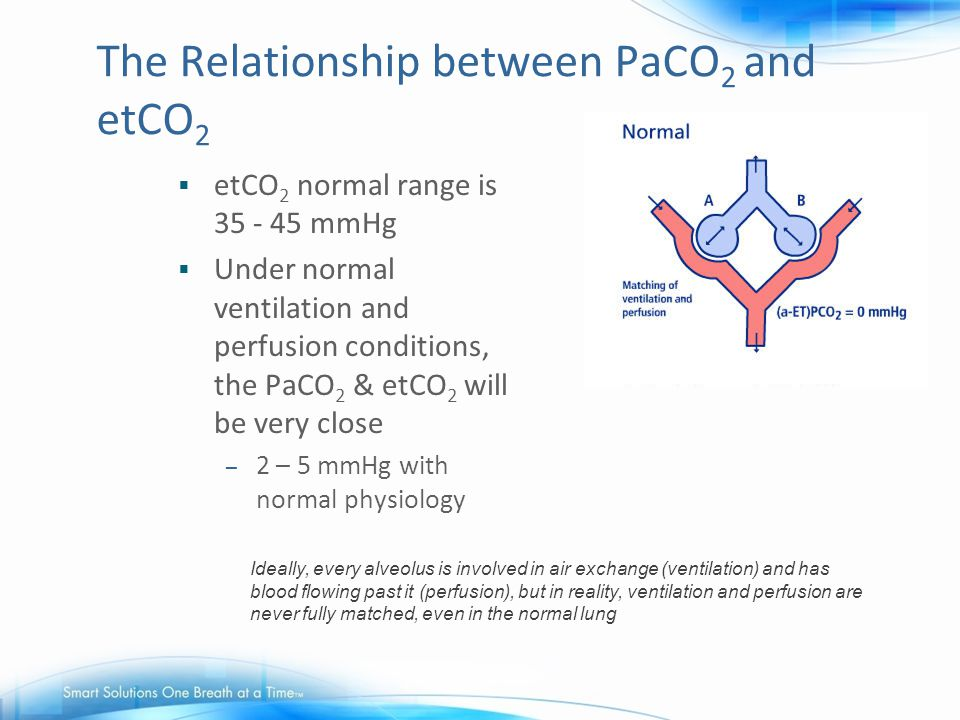 The Relationship between PaCO2 and etCO2