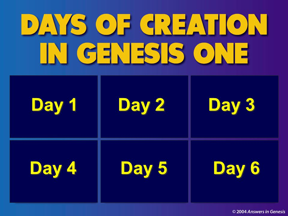 Days of Creation in Genesis One 00825
