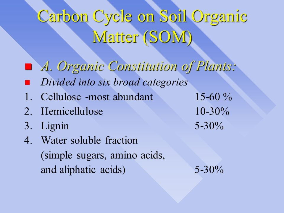 Carbon Cycle on Soil Organic Matter (SOM)