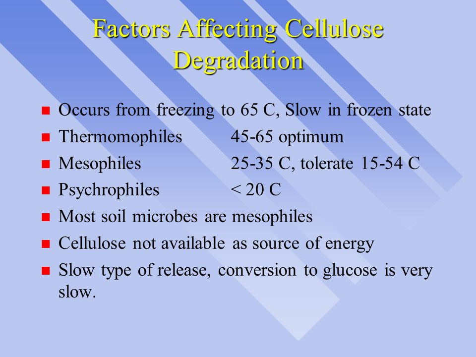 Factors Affecting Cellulose Degradation