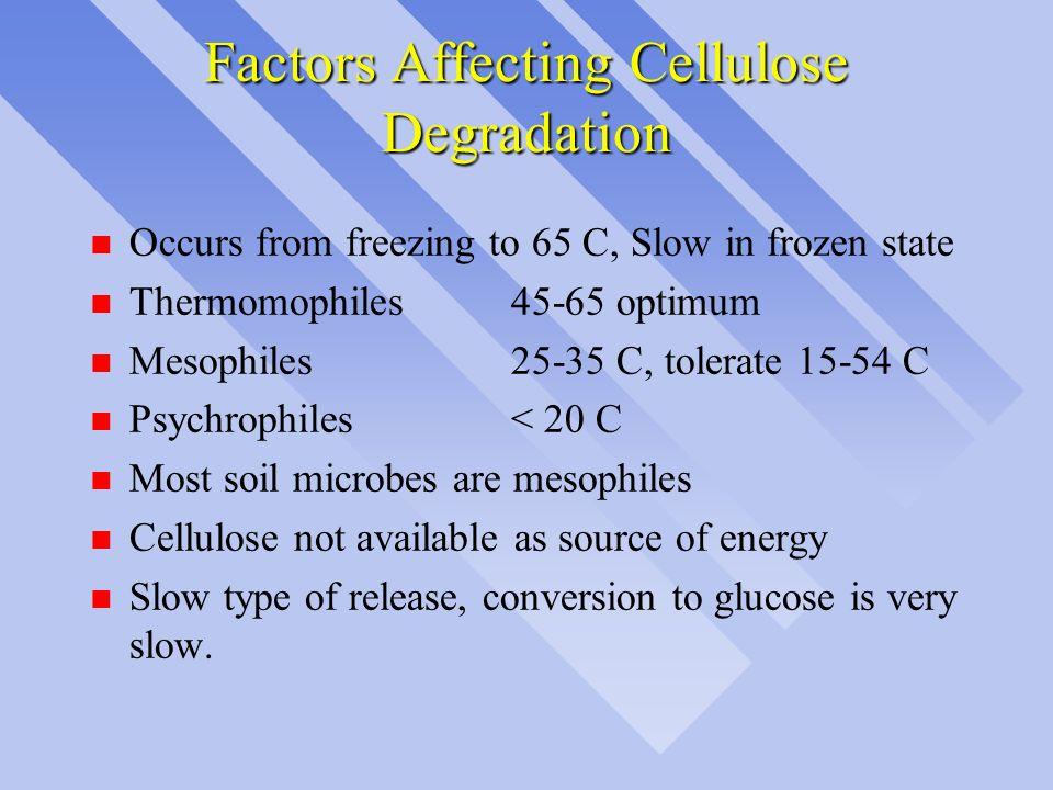Factors Affecting Cellulose Degradation