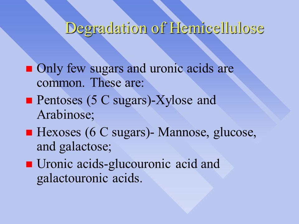 Degradation of Hemicellulose