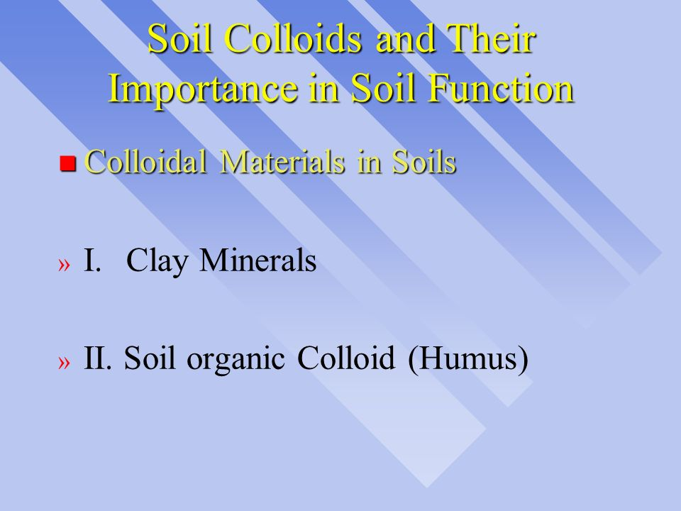 Soil Colloids and Their Importance in Soil Function