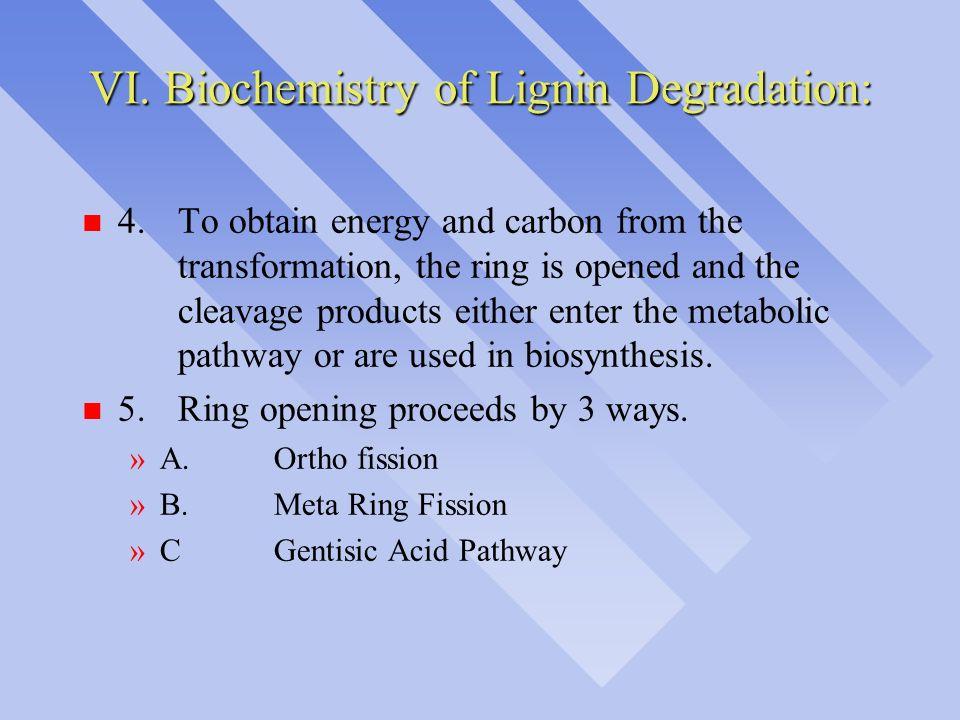 VI. Biochemistry of Lignin Degradation: