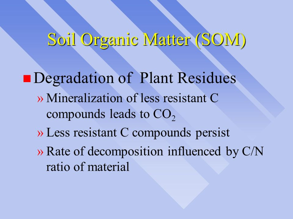Soil Organic Matter (SOM)