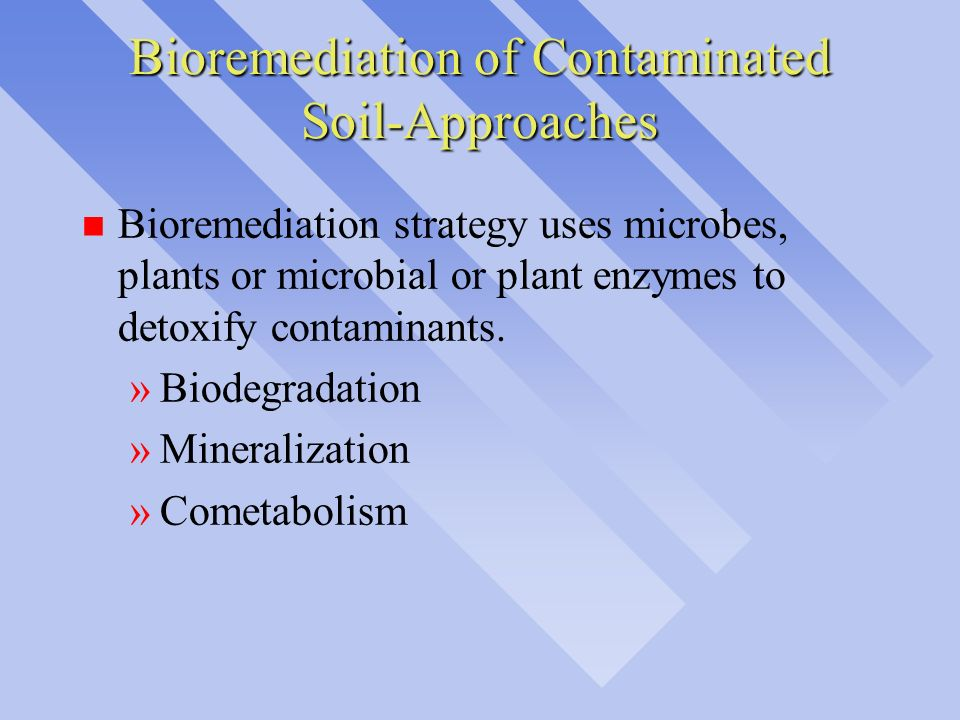 Bioremediation of Contaminated Soil-Approaches