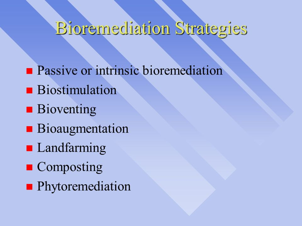 Bioremediation Strategies