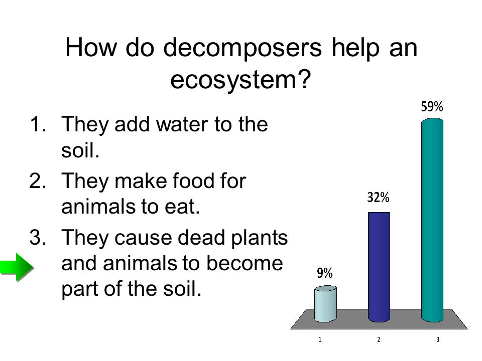 How do decomposers help an ecosystem
