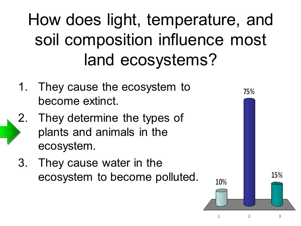 How does light, temperature, and soil composition influence most land ecosystems