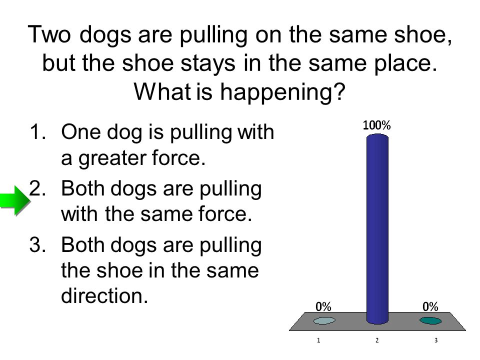 Two dogs are pulling on the same shoe, but the shoe stays in the same place. What is happening