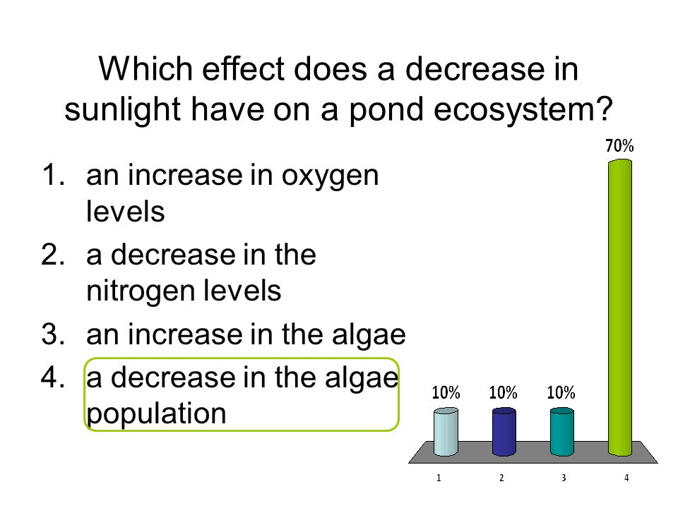 Which effect does a decrease in sunlight have on a pond ecosystem
