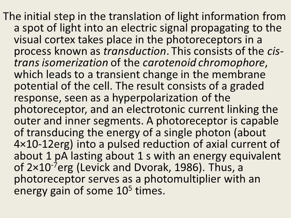 The initial step in the translation of light information from a spot of light into an electric signal propagating to the visual cortex takes place in the photoreceptors in a process known as transduction. This consists of the cis-trans isomerization of the carotenoid chromophore, which leads to a transient change in the membrane potential of the cell. The result consists of a graded response, seen as a hyperpolarization of the photoreceptor, and an electrotonic current linking the outer and inner segments. A photoreceptor is capable of transducing the energy of a single photon (about 4×10-12erg) into a pulsed reduction of axial current of about 1 pA lasting about 1 s with an energy equivalent of 2×10-7erg (Levick and Dvorak, 1986). Thus, a photoreceptor serves as a photomultiplier with an energy gain of some 105 times.
