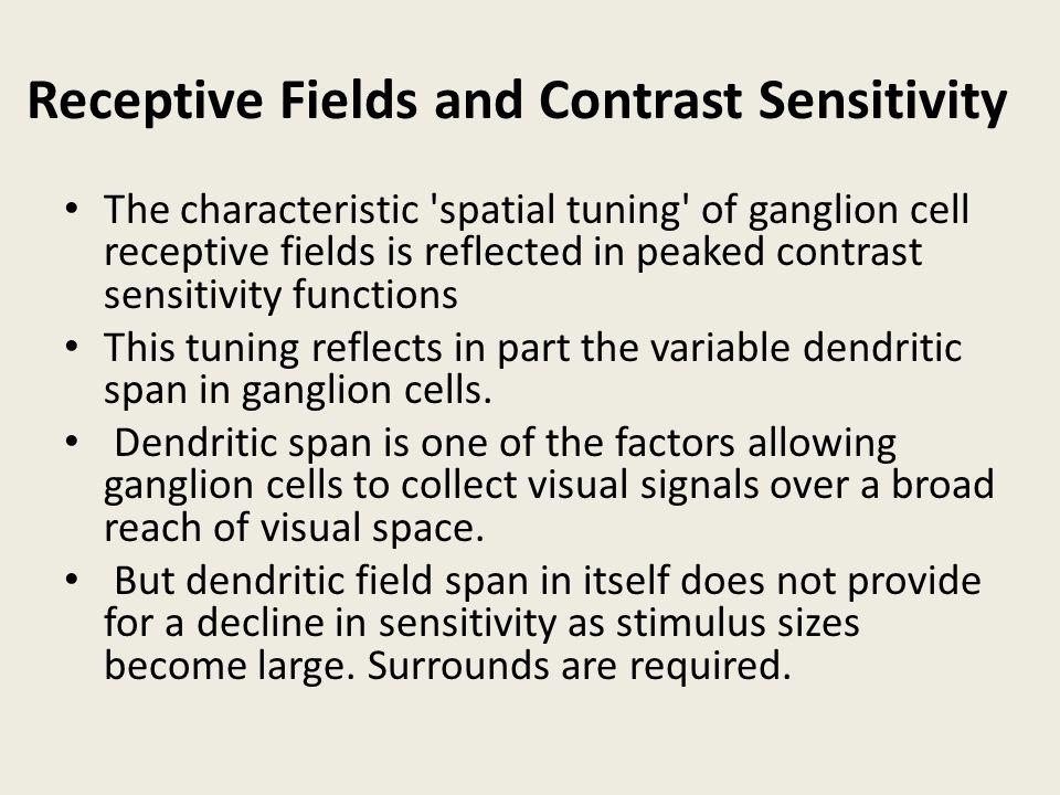 Receptive Fields and Contrast Sensitivity